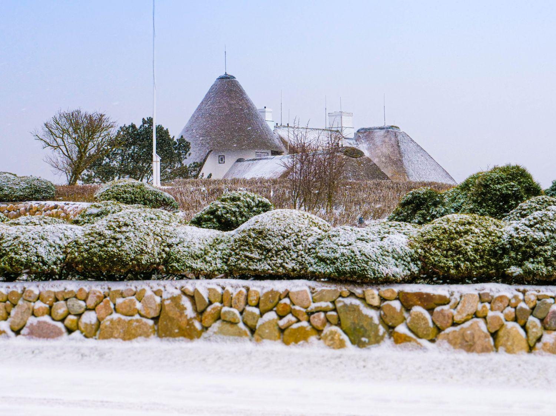 Sylter Garten im Winter